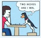 Chess_poet