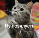 Морось
